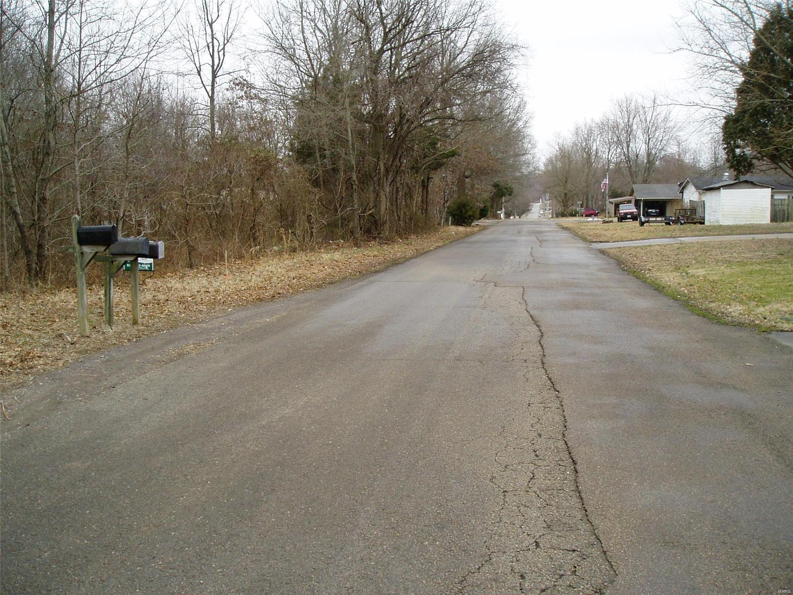 0 North Hickory Property Photo - Dexter, MO real estate listing