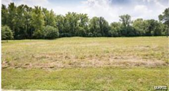 14 Bogey Property Photo - Union, MO real estate listing