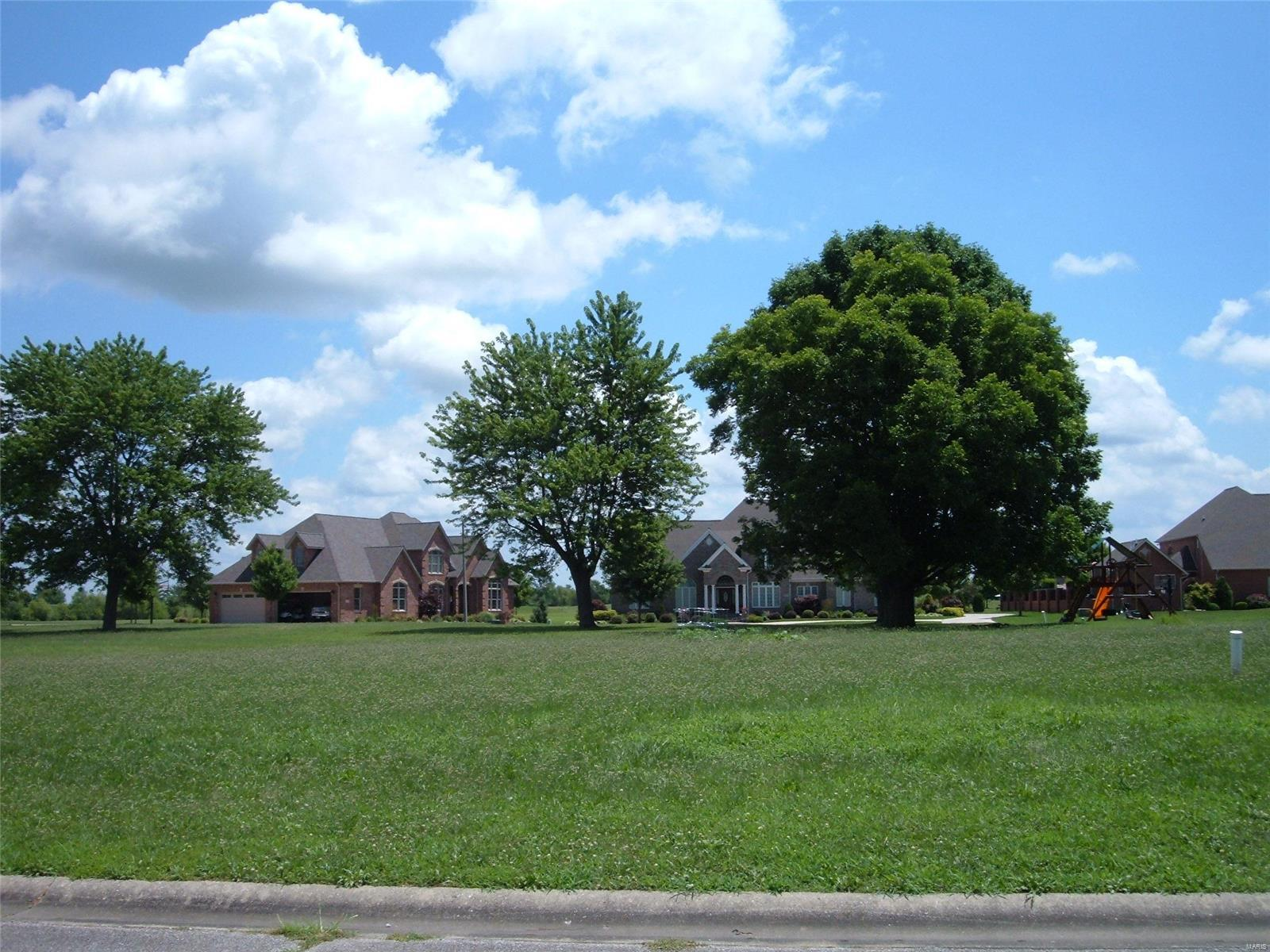 45 Spring Valley Drive Property Photo - Okawville, IL real estate listing