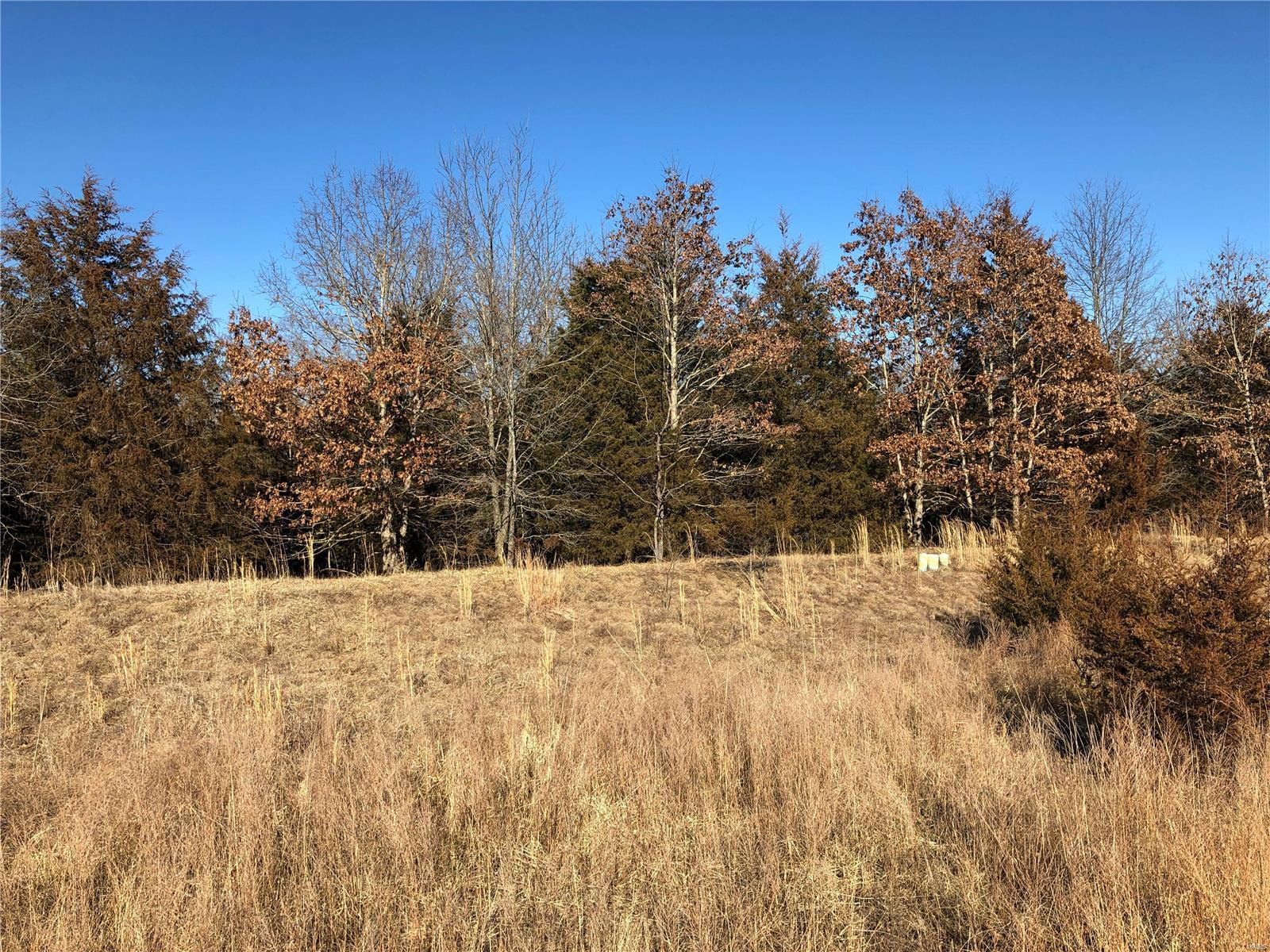 2482 Alpine Summit Drive Property Photo - Innsbrook, MO real estate listing