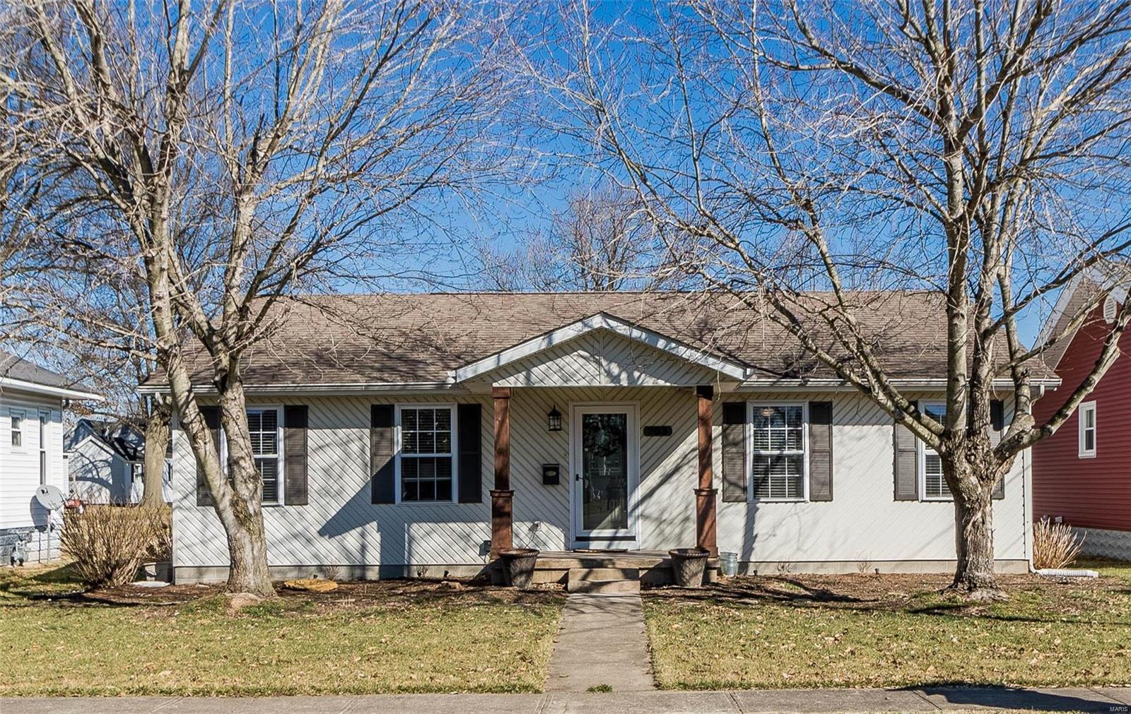 703 Monroe Avenue Property Photo - Johnston City, IL real estate listing