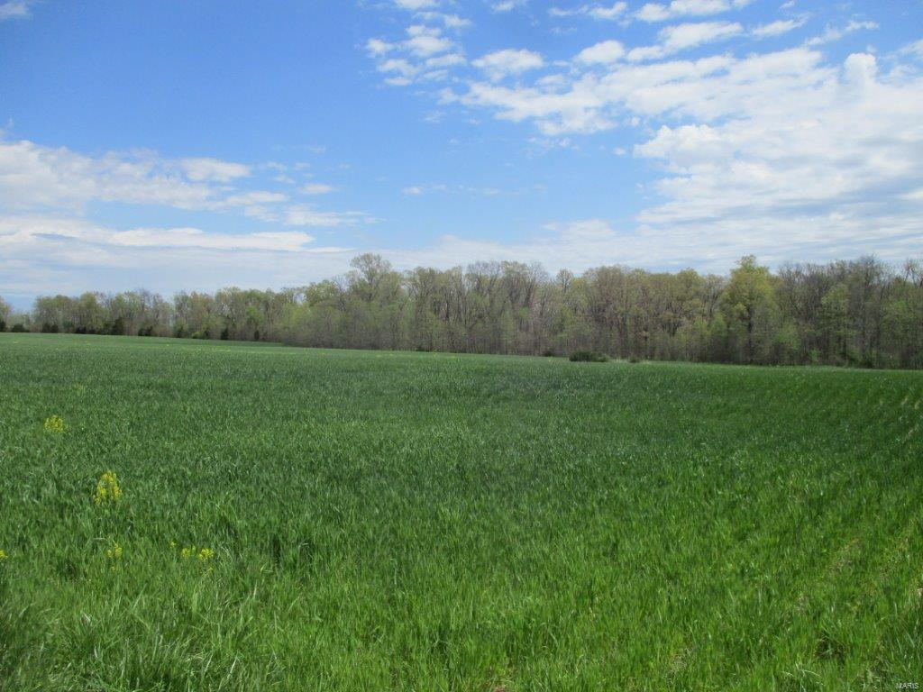 253 Bluebird Road Property Photo - Montgomery City, MO real estate listing