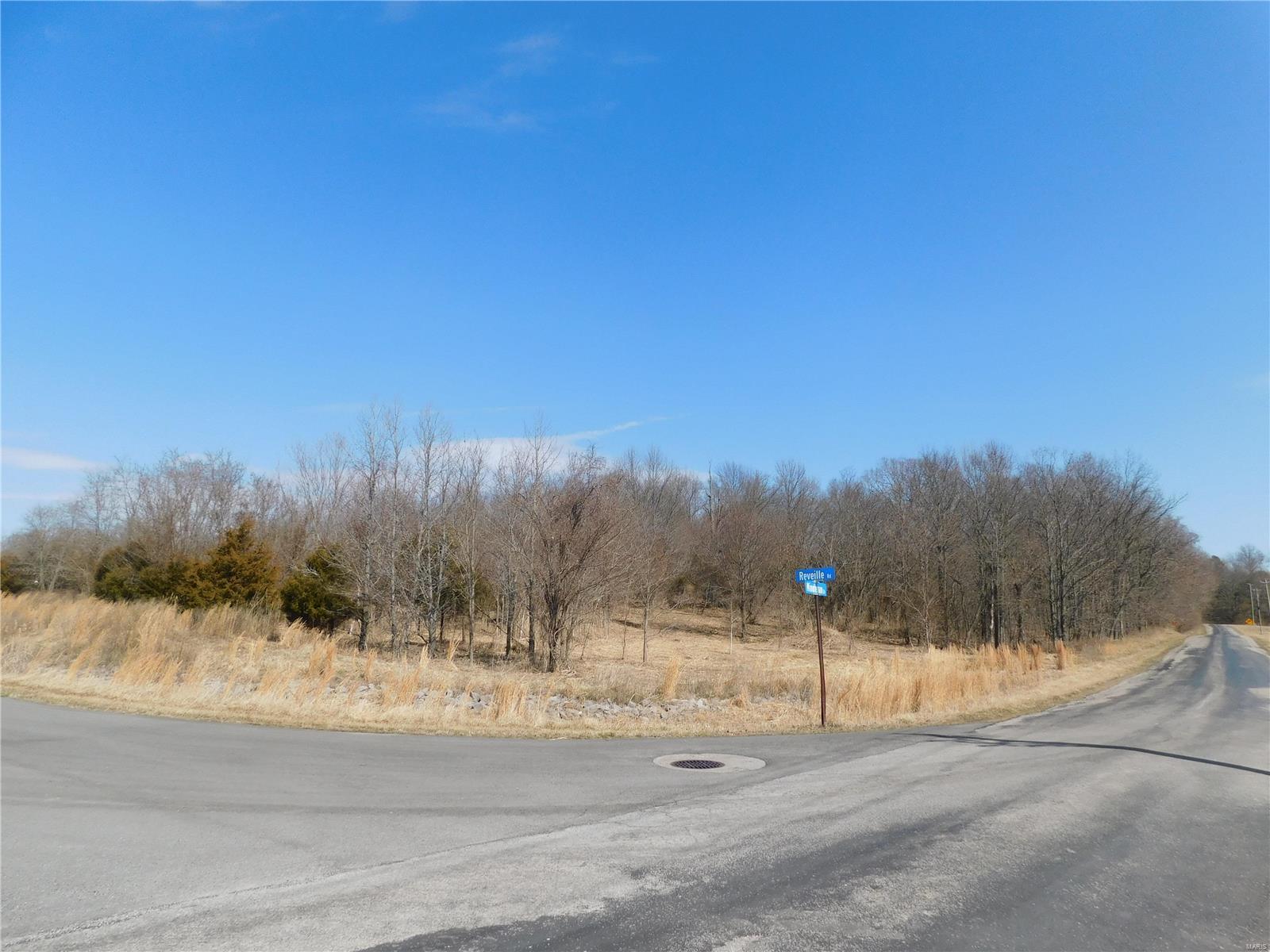 0 Minuteman Drive Property Photo 1