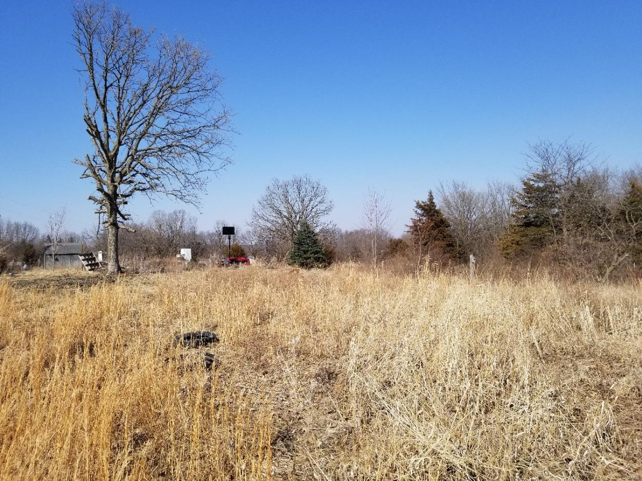 3581 County Road 177 Property Photo - Emden, MO real estate listing