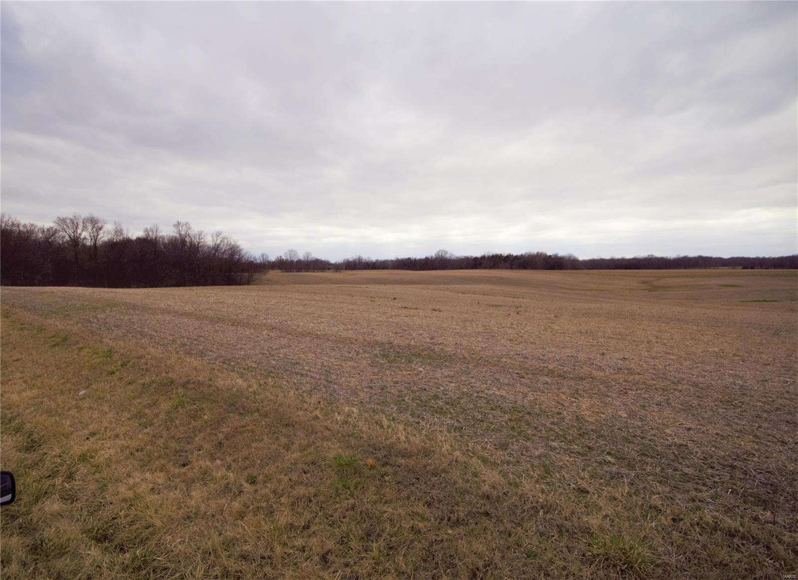 0 Kaskaskia Road Property Photo - Fults, IL real estate listing
