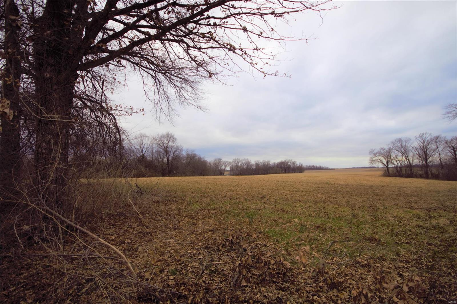 0 Russell Drive Property Photo - Red Bud, IL real estate listing