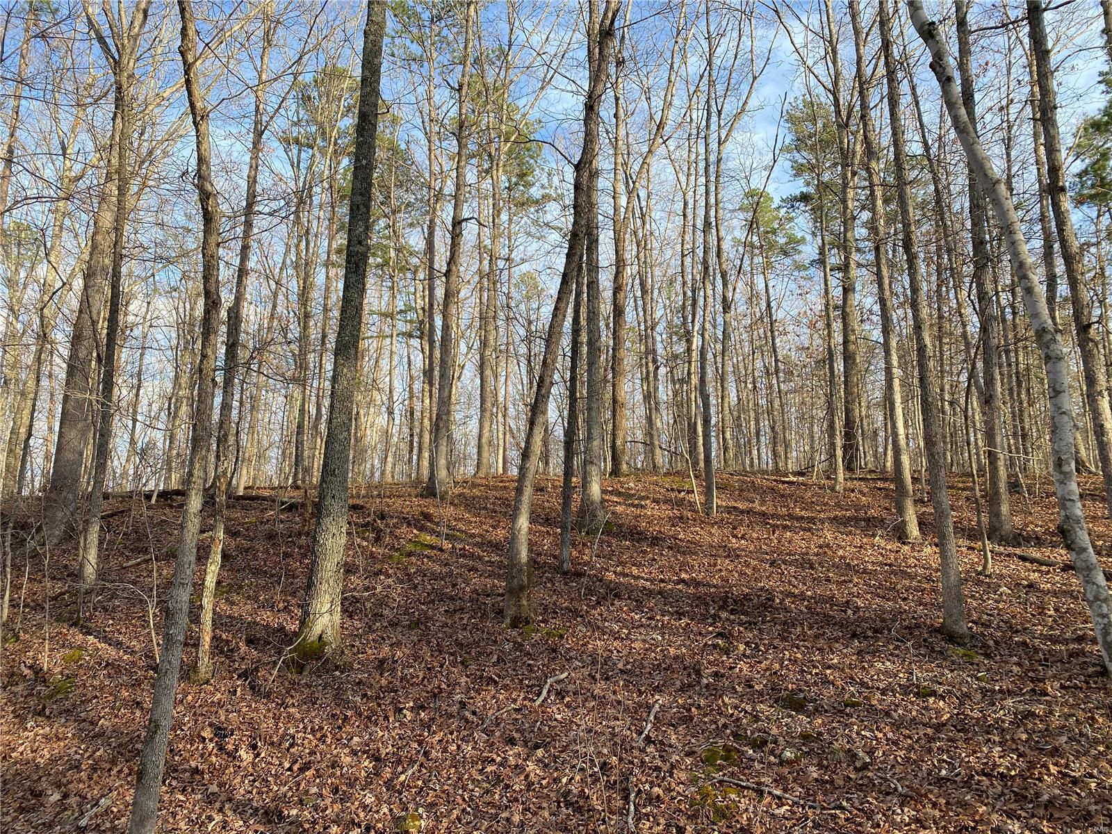 0 Off Madison 302 Property Photo - Marquand, MO real estate listing