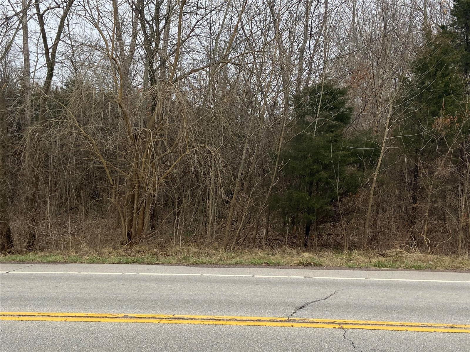 0 Hwy 221 Street Property Photo - Doe Run, MO real estate listing