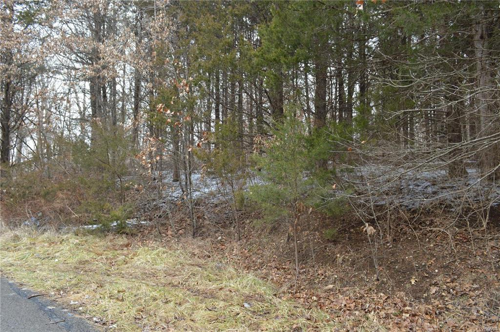 234 Red Cedar Lot 234 Court Property Photo - Foristell, MO real estate listing