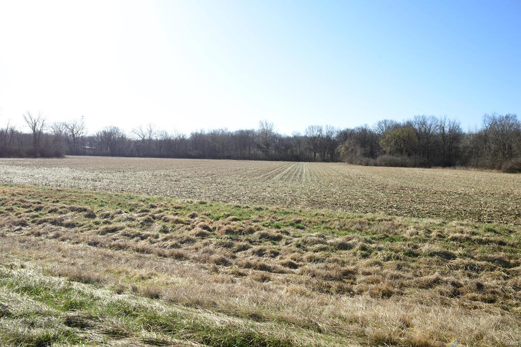 0 State Hwy B Property Photo - Elsberry, MO real estate listing