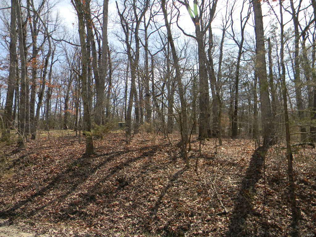 0 Linden Lane, Blk 8, Lot 85 Property Photo - New Haven, MO real estate listing