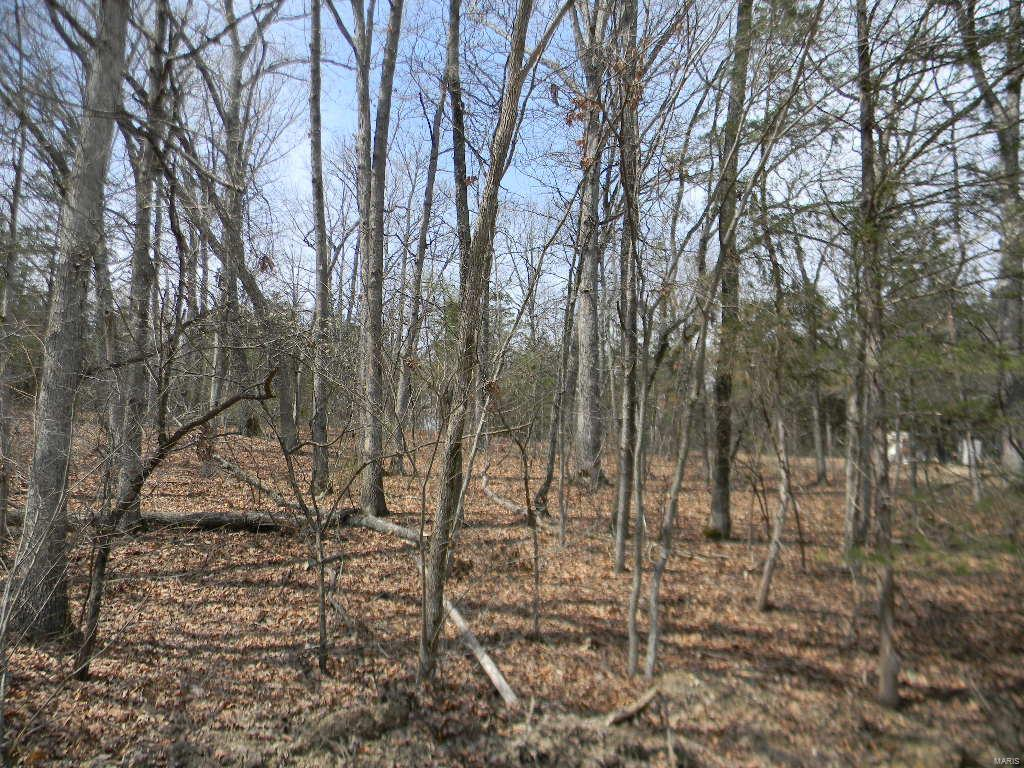 0 Cypress Leaf, Blk 4, Lot 68 Property Photo - New Haven, MO real estate listing