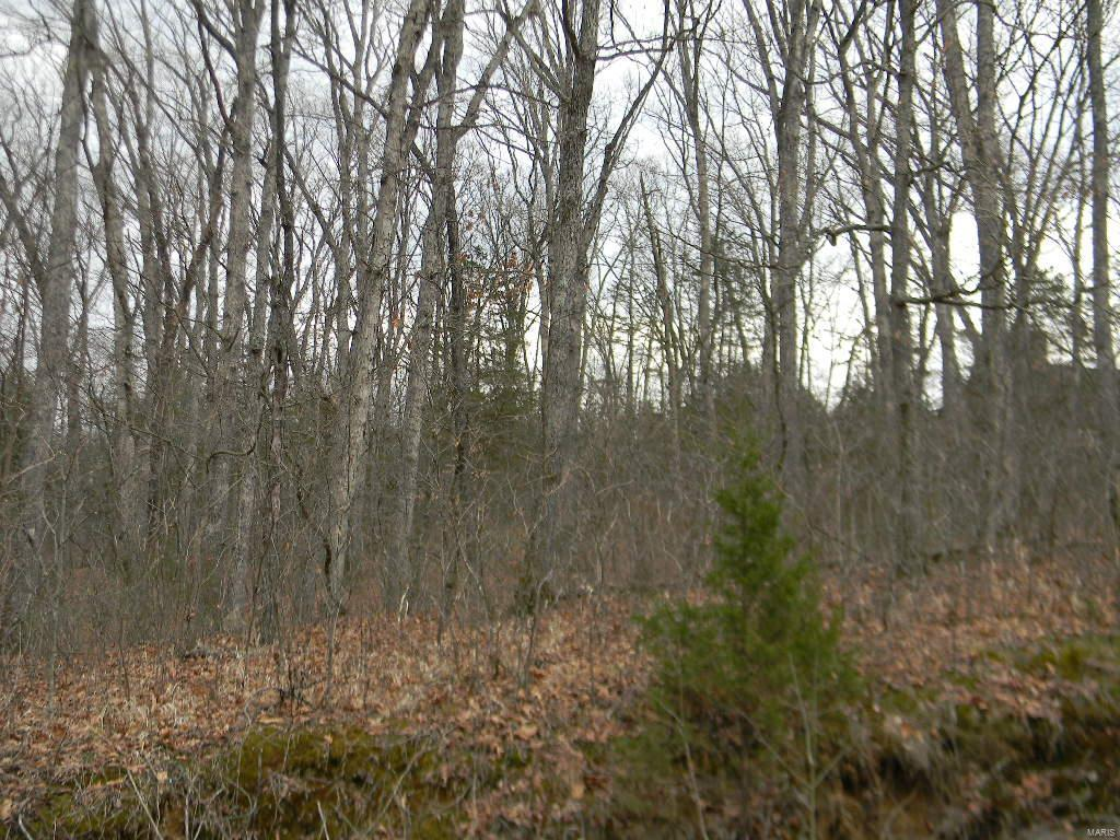 0 Renegade Blk 2, Lot 55 Trail Property Photo - New Haven, MO real estate listing
