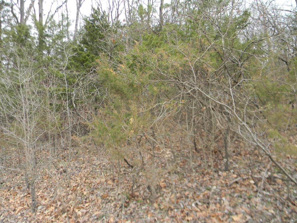 0 Lakeshore Blk 2, Lot 87 Property Photo - New Haven, MO real estate listing