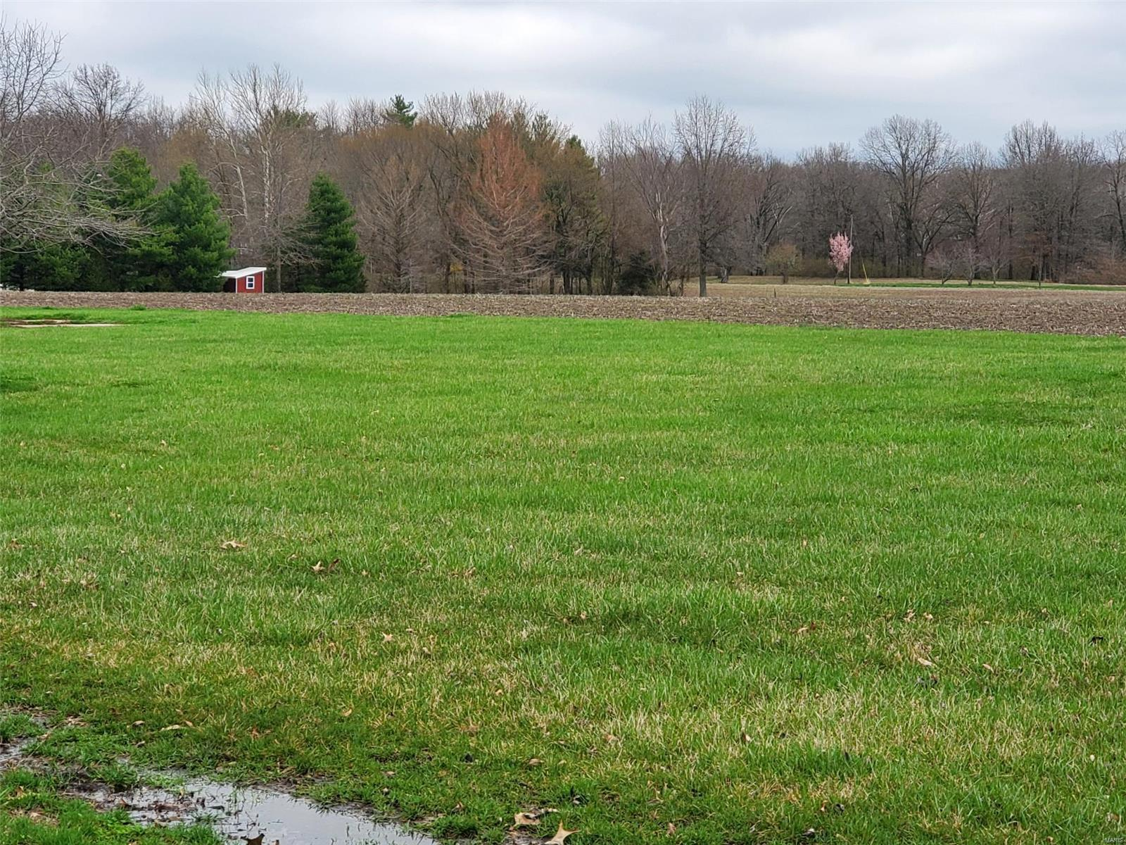 451 Cox Monument Avenue Property Photo - Pocahontas, IL real estate listing