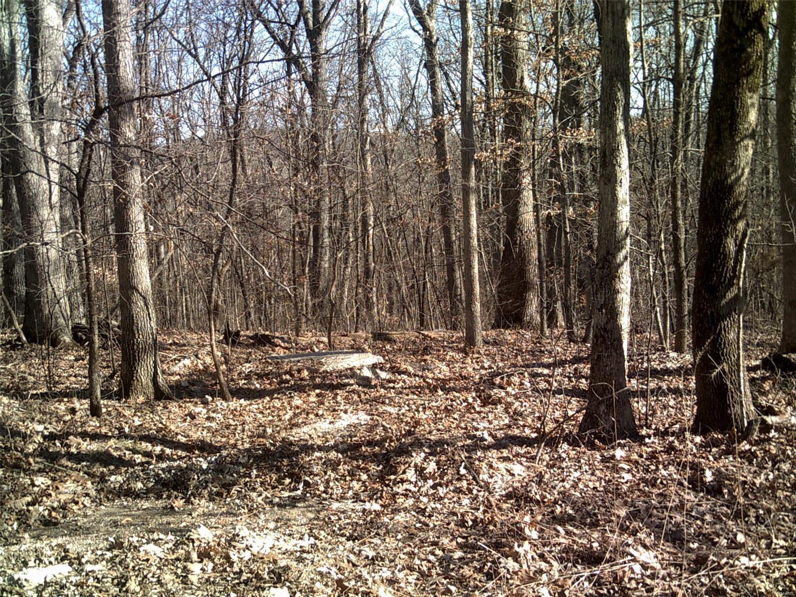 0 Maple Ridge Lane Property Photo - New Florence, MO real estate listing