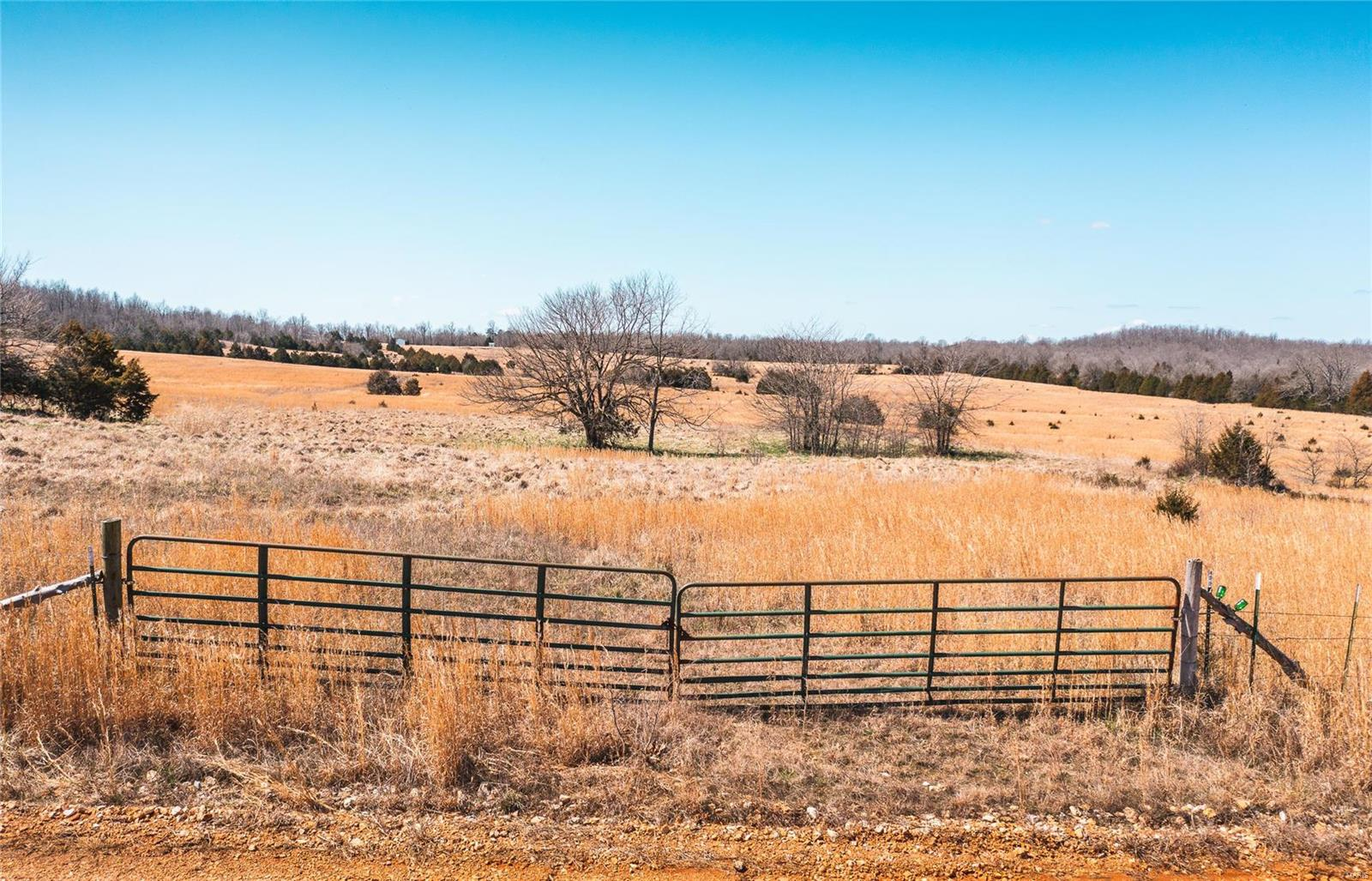 0 Private Road 9940 Property Photo - West Plains, MO real estate listing