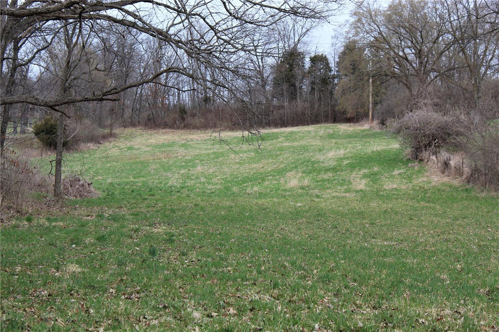 0 Hwy 54 Property Photo - Bowling Green, MO real estate listing