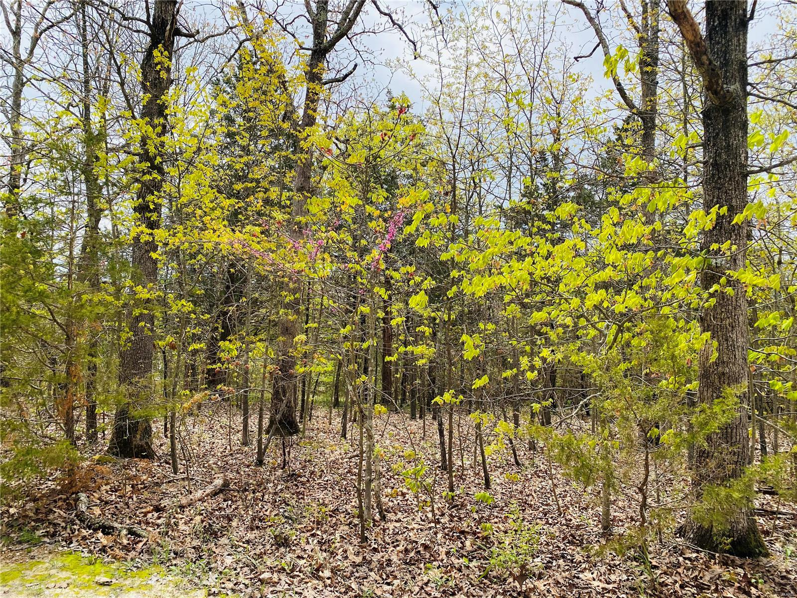 516 PICADILLY Court Property Photo - De Soto, MO real estate listing