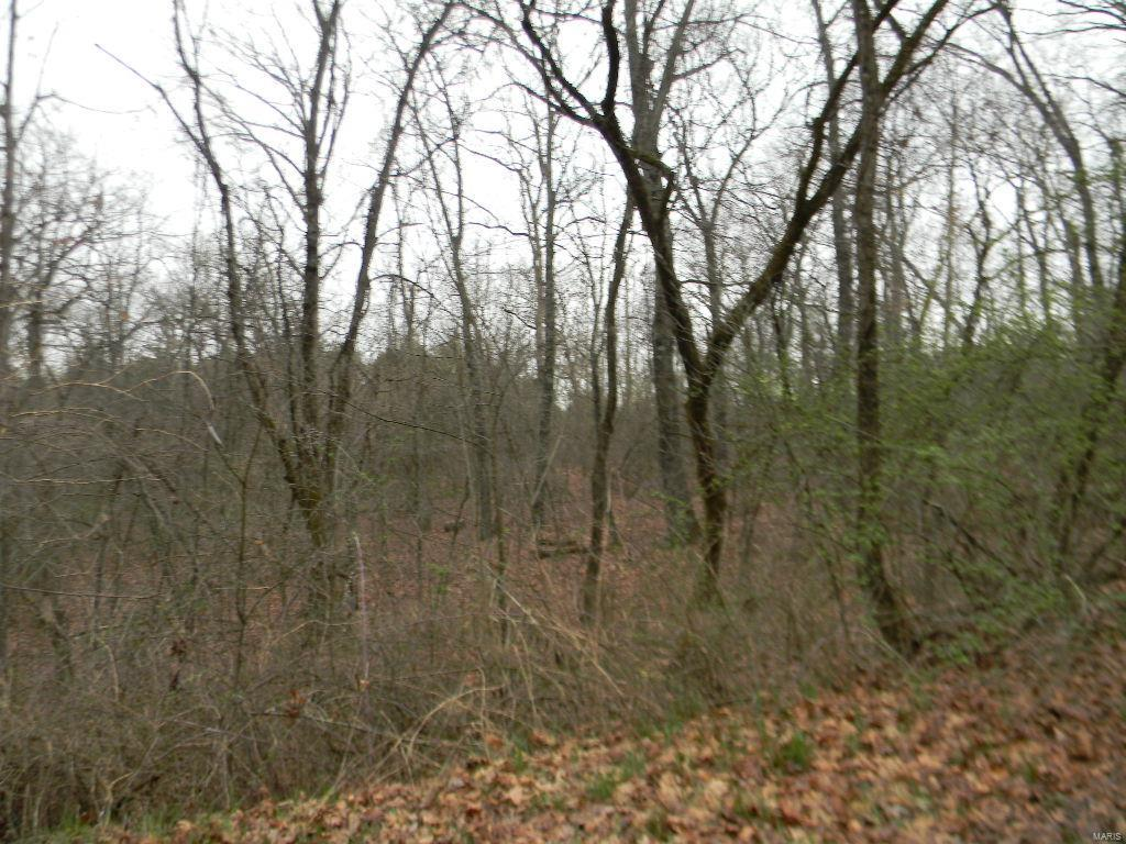 0 Clare Blk 2, Lots 30 & 31 Property Photo - New Haven, MO real estate listing
