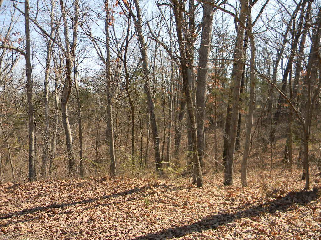 0 Cedar Ct. - Blk 1, Lot 52 Property Photo