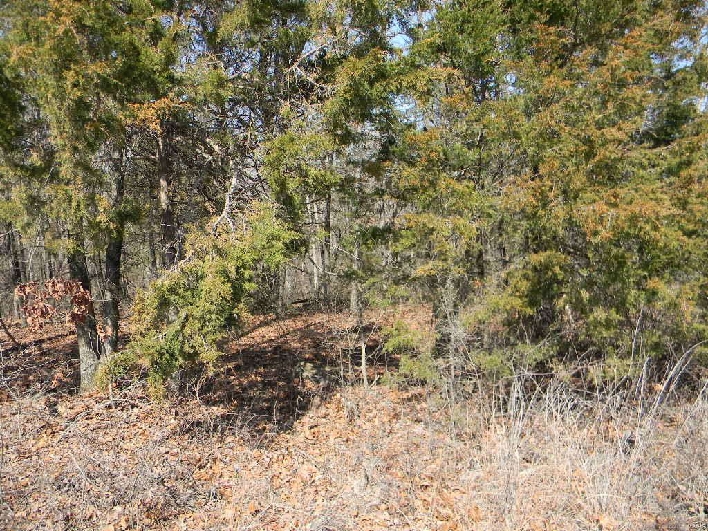 0 Sky Line Drive - Blk 1, Lot 12 Property Photo - New Haven, MO real estate listing
