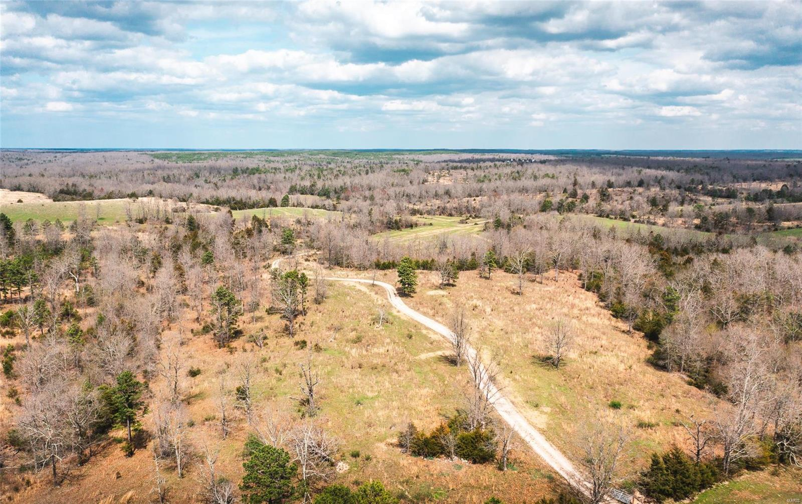 0 Highway N Property Photo - Licking, MO real estate listing