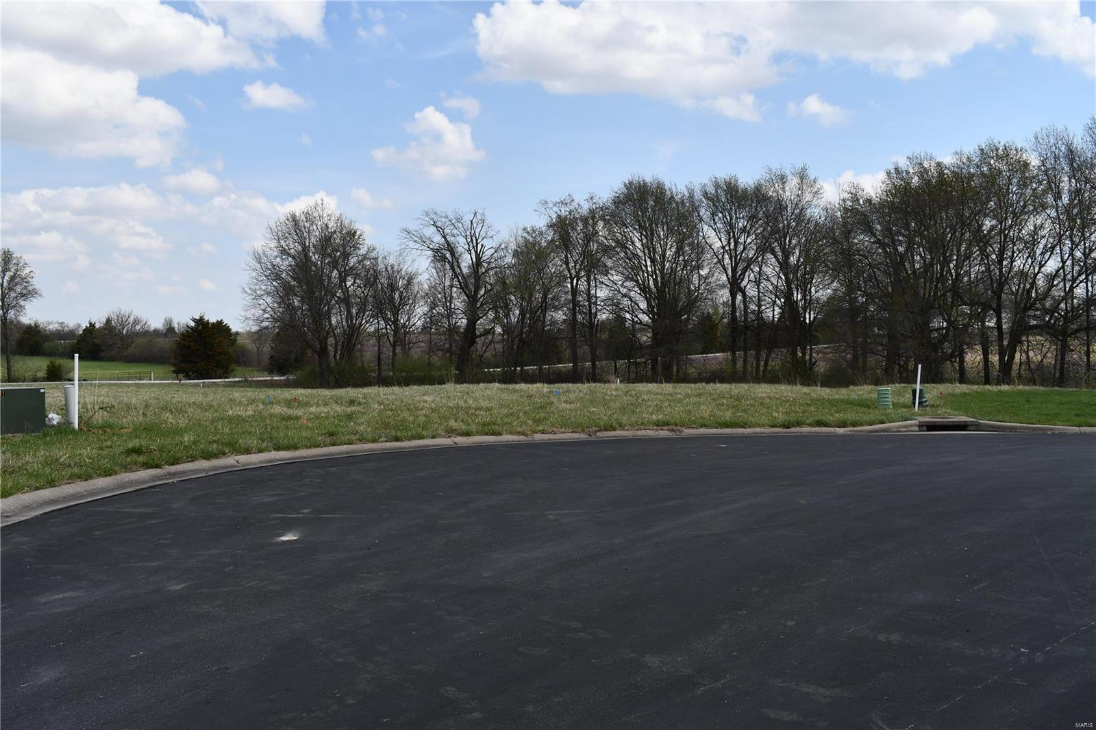 26 Golden Oak Court Property Photo - Montgomery City, MO real estate listing
