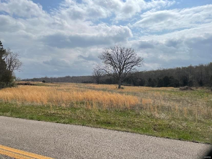 0 W & E of Hwy P Property Photo - Gatewood, MO real estate listing