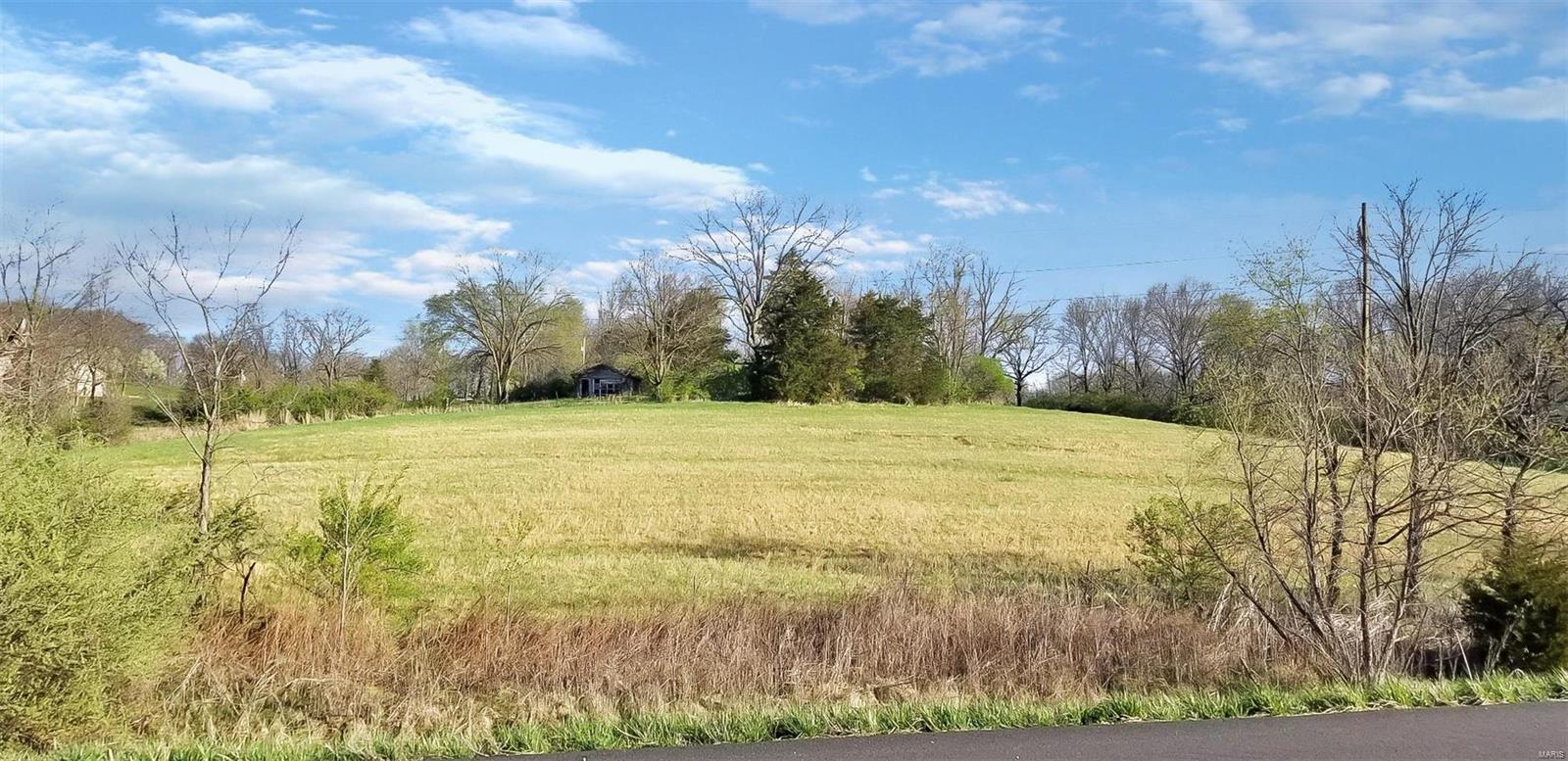 16928 Hwy 54 (9.161+/- acres) Property Photo - Bowling Green, MO real estate listing