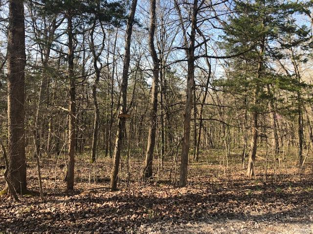 6 Hickory Hill Drive Property Photo - New Florence, MO real estate listing