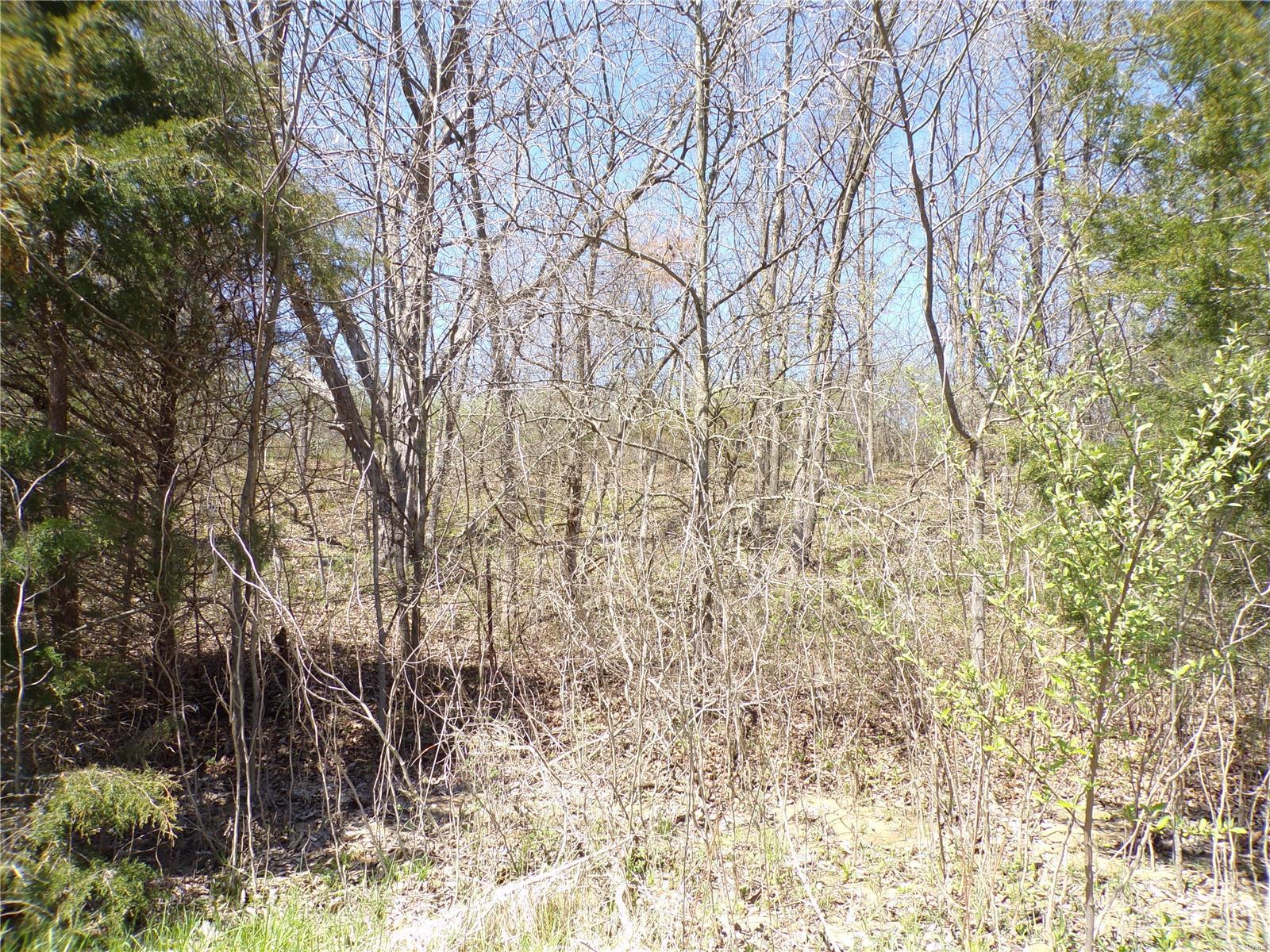 16755 Madden Drive Property Photo - Monroe City, MO real estate listing