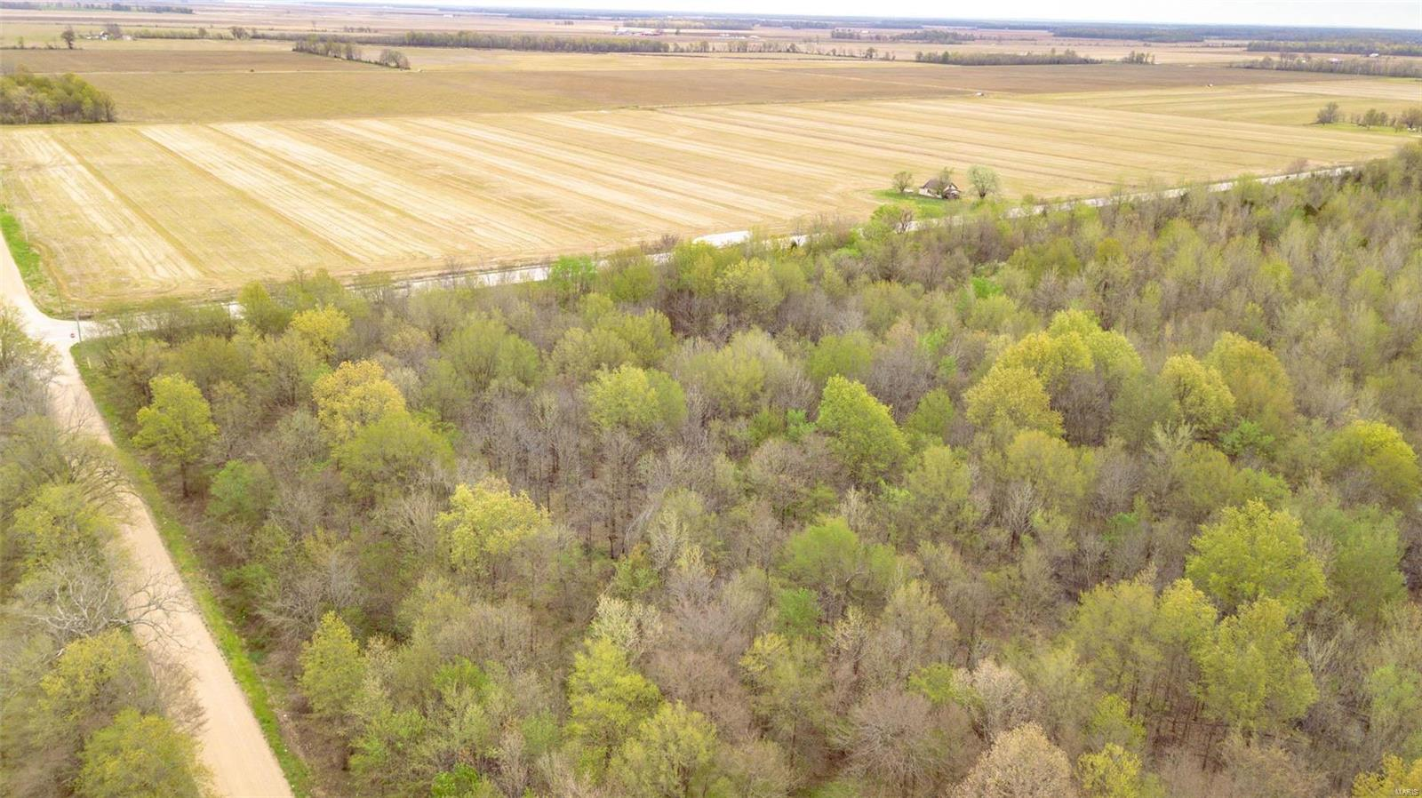 0 SW COR Hwy 67S & CR 352 Property Photo - Neelyville, MO real estate listing