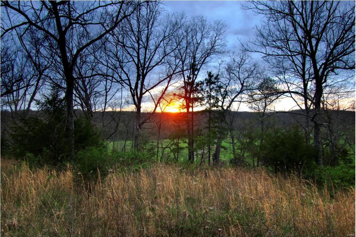 0 TBD WHITE CREEK ROAD Property Photo - Mountain Grove, MO real estate listing