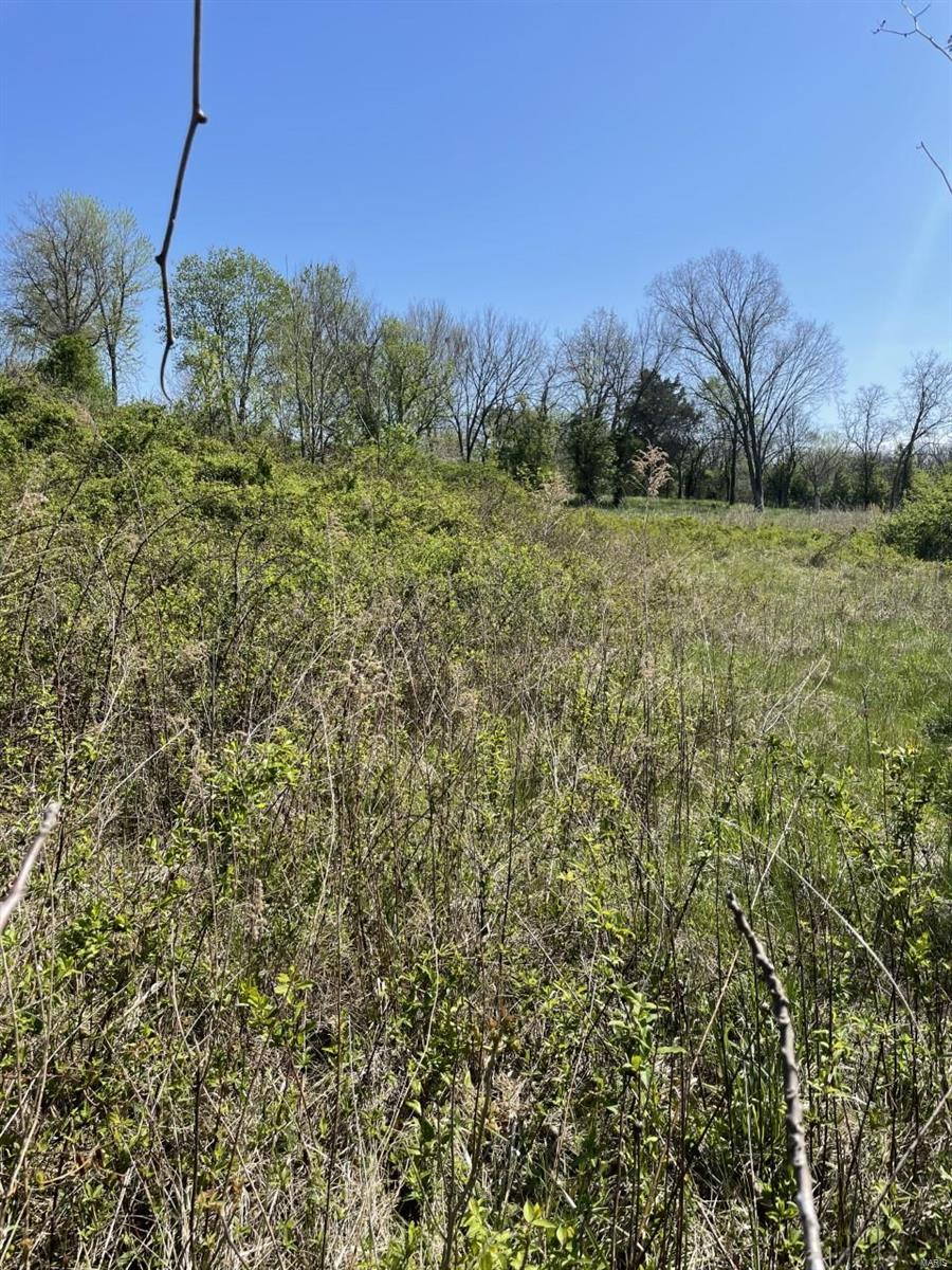 0 Kelly Lots 7, 8 and 9 E Property Photo - De Soto, MO real estate listing