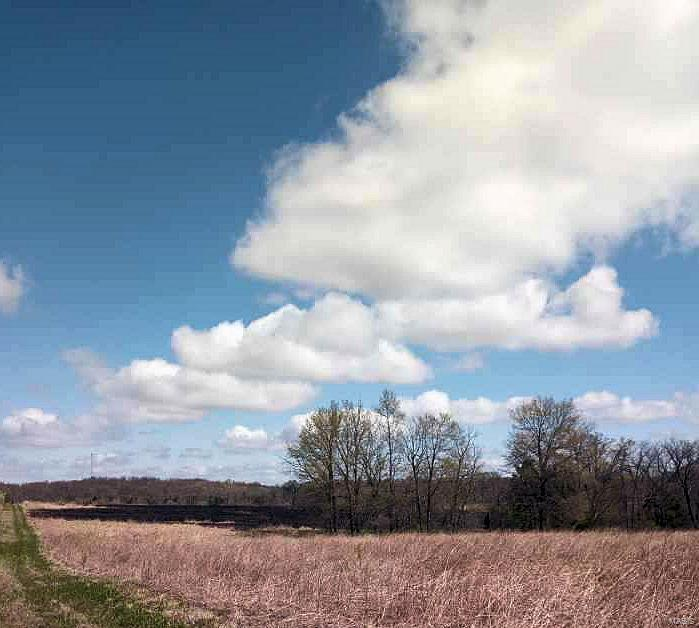 1 Hwy CC Property Photo - Center, MO real estate listing