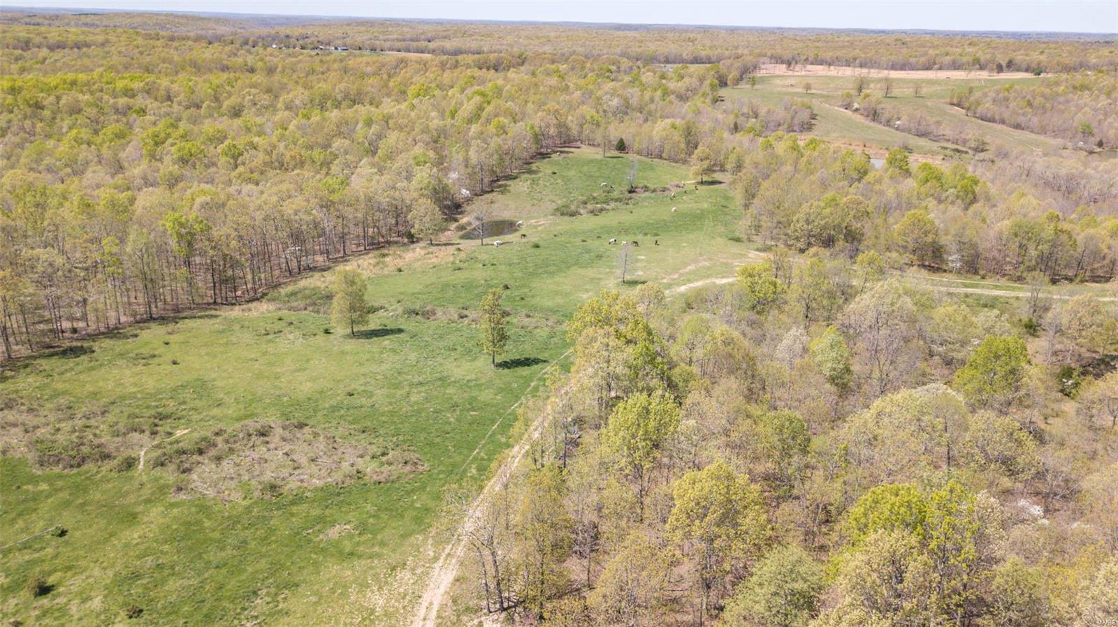 0 Off County Road 508 Property Photo - Lowndes, MO real estate listing