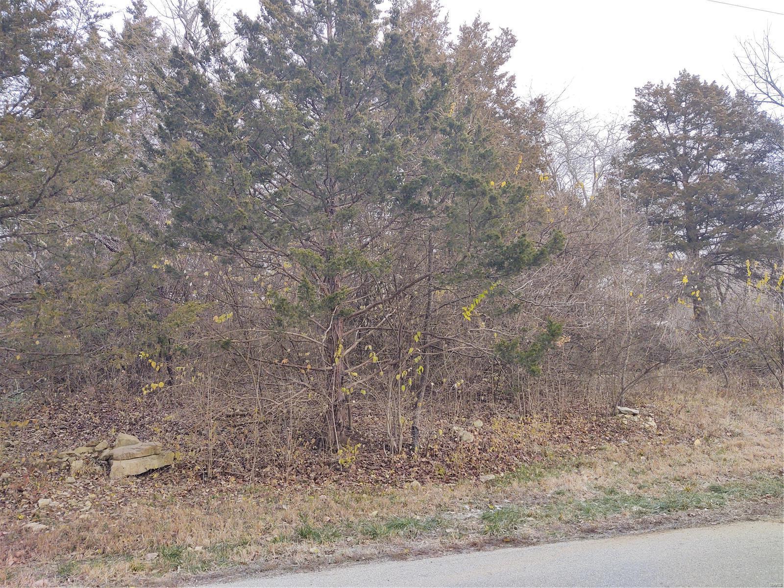 0 lot 48 Fernwood Circle Property Photo - House Springs, MO real estate listing