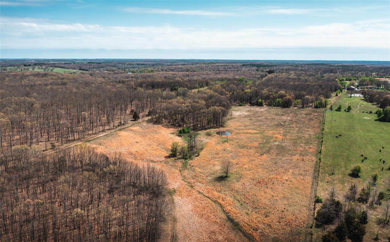 19225 State Route M Property Photo - Edgar Springs, MO real estate listing