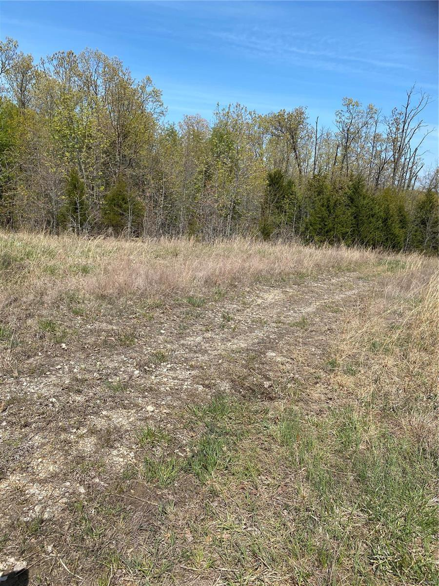 0 Texas Rd Property Photo - St Robert, MO real estate listing