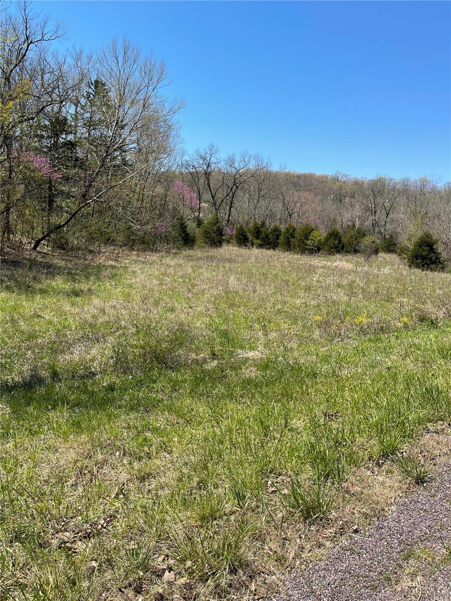 0 Spring Creek Property Photo - Sullivan, MO real estate listing