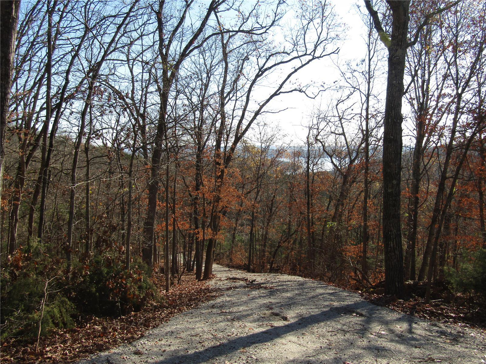 0 State Highway DD Property Photo - Branson, MO real estate listing