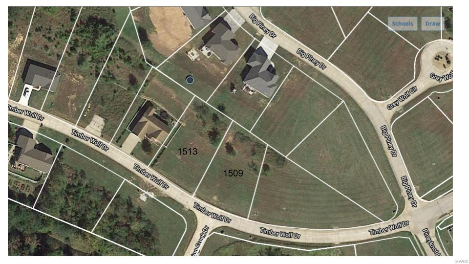 1513 Timber Wolf Property Photo - Festus, MO real estate listing