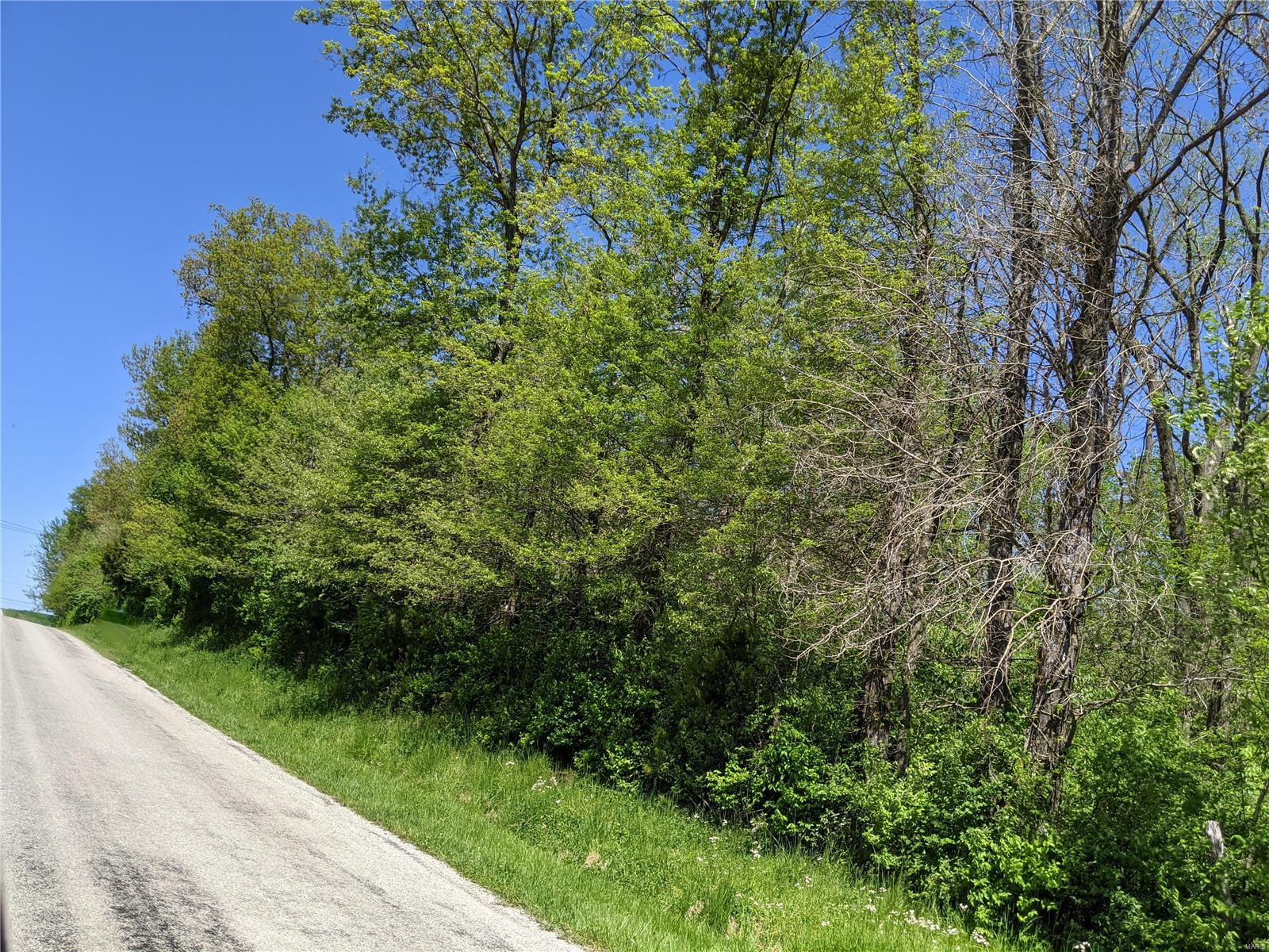 0 Holcomb School Road Property Photo - Freeburg, IL real estate listing