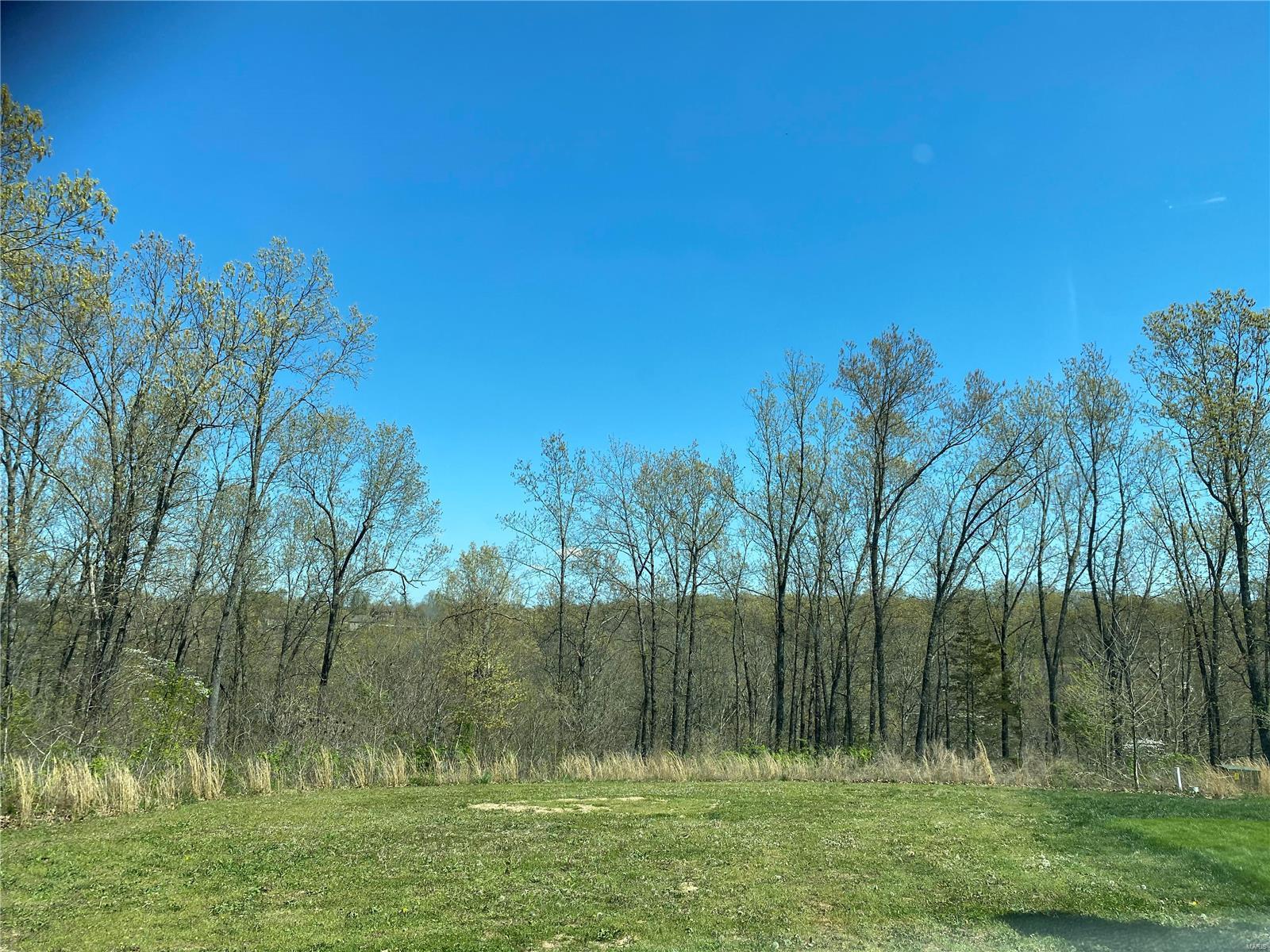0 Lannigan Road Property Photo - Waynesville, MO real estate listing