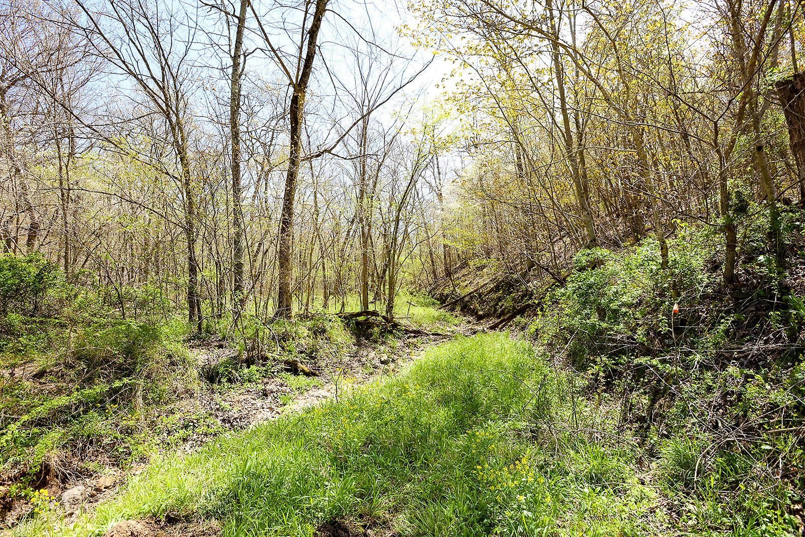 0 160 +/- Acres State Highway O Property Photo - Dixon, MO real estate listing