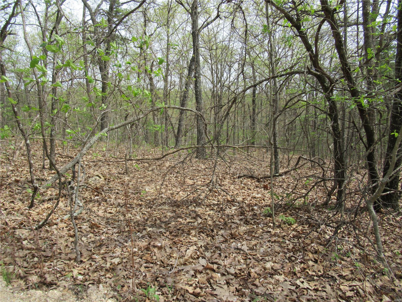 0 Baja Dr, Lot 6 Property Photo - Sullivan, MO real estate listing