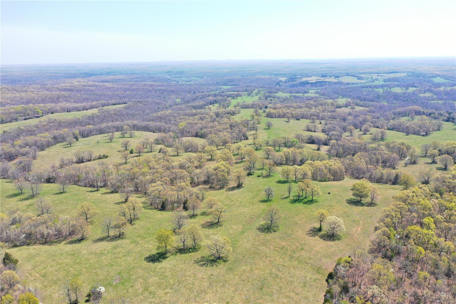 310 Woolsey Road Property Photo - Steelville, MO real estate listing