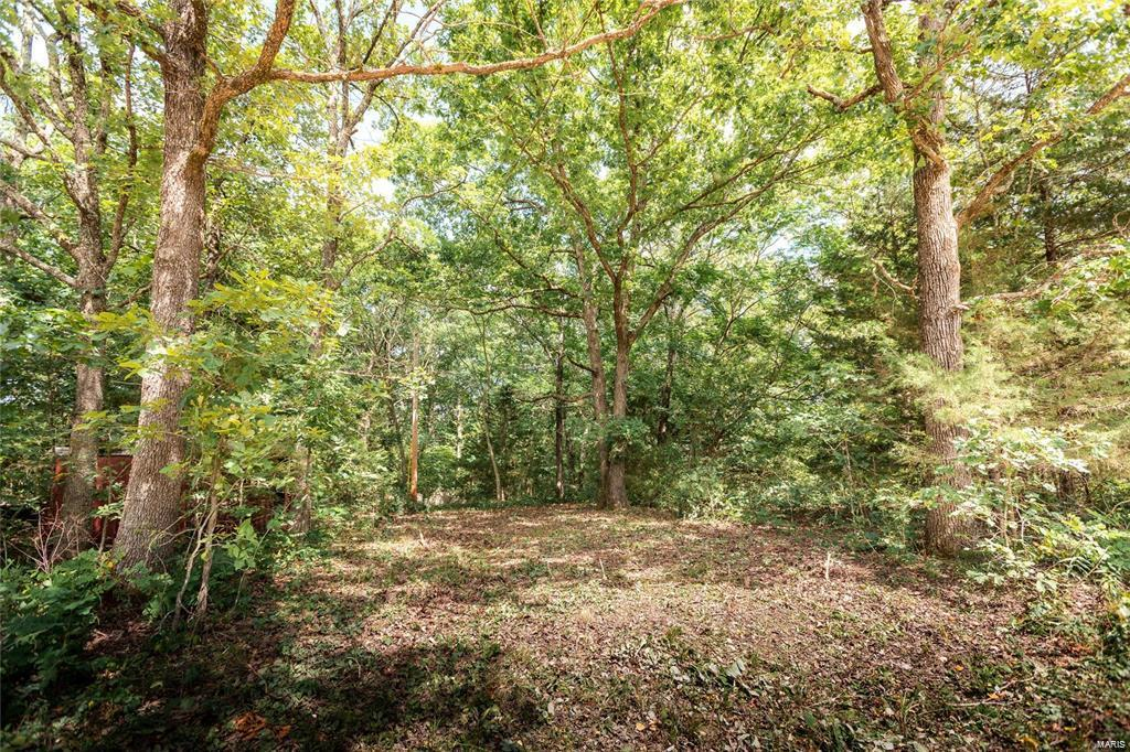 22320 County Road 7670 Tract 5 Property Photo - Newburg, MO real estate listing