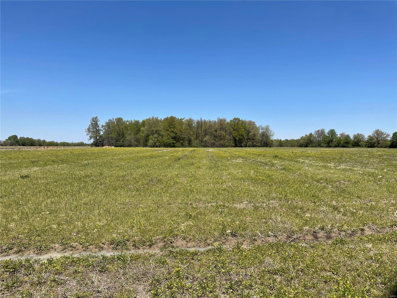 0 North of Hwy DD Property Photo - Campbell, MO real estate listing